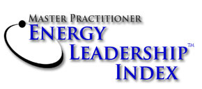 master-practitioner-energy-leadership-index